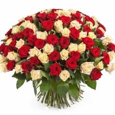 Ливень водопадом (85 роз)