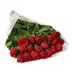 Замерзшие розы (25 шт)