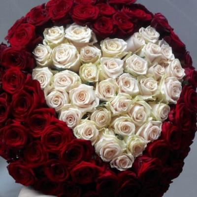 Чернушка 101 роза