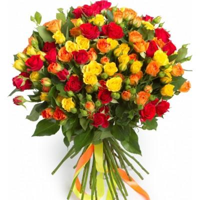 Каталия (25 роз)