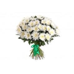 Добрая (хризантемы)