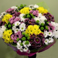Ежевика (хризантемы)