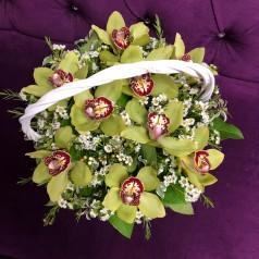 """Букет орхидеи цимбидиум """"Сладкий ноябрь"""" 9 шт"""