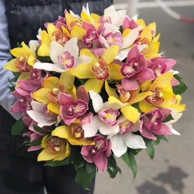 """Букет орхидеи цимбидиум """"Взрывная страсть"""" 35 шт"""
