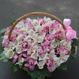 "Букет орхидеи цимбидиум ""Счастье моё"" 51 шт"