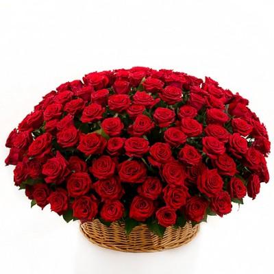 Корзина красная 101 роза