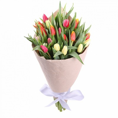 Кольковиция Тюльпаны