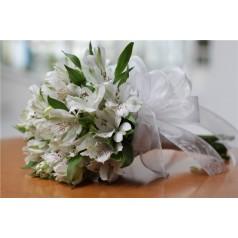Роджерсия букет невесты