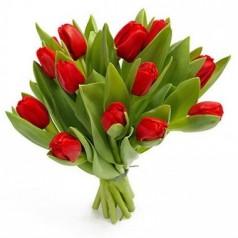 Помероль Тюльпаны