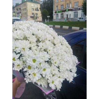 """Букет белых хризантем """"Доброе утро"""" 31 шт"""