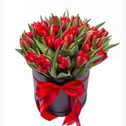 Букет тюльпанов Монарда
