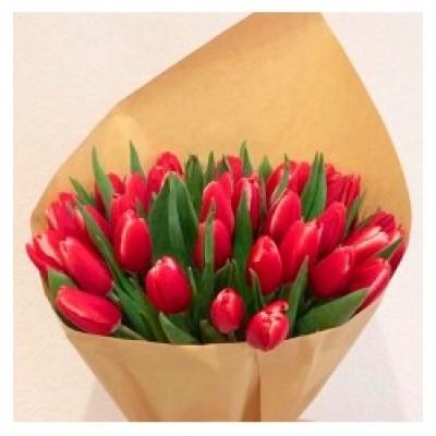 Колумения Тюльпаны
