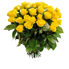 Розы желтые (25 шт)