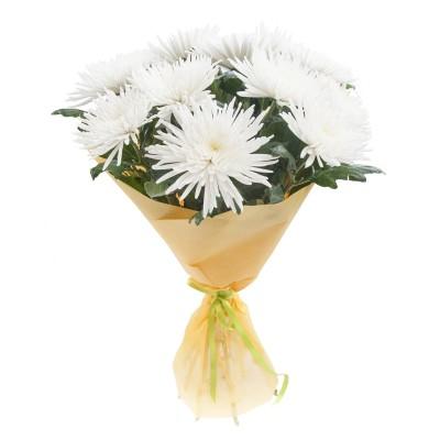 Хризантемы одноголовые белые 9 шт