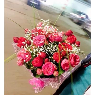 Розы пионовидные кустовые 15 шт
