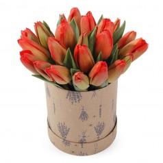 Ласковая Тюльпаны