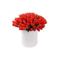 Креативная Тюльпаны