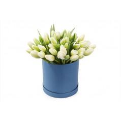 Обольстительная Тюльпаны