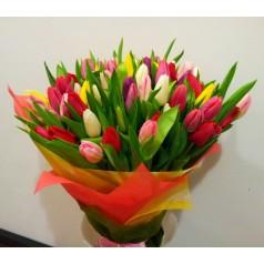 Букет тюльпанов Акита