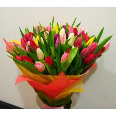 Букет Тюльпаны разноцветные 35 шт Акита