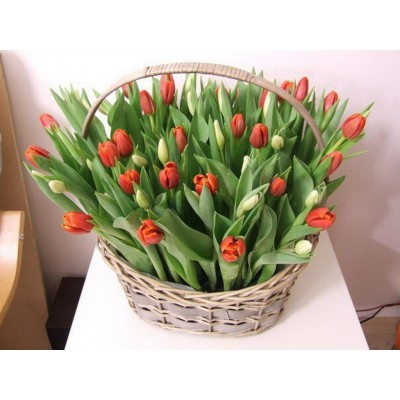 Колокольчик Тюльпаны