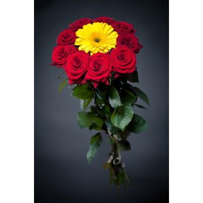 Букет Солнышко (10 роз и гербера)