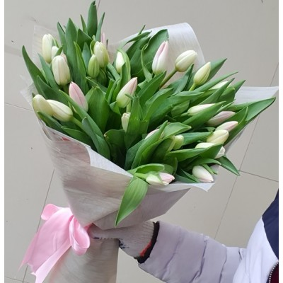"""Букет нежных тюльпанов """"Финик"""" 35 шт"""