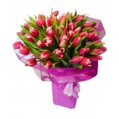 """Букет """"Апельдорн"""" Тюльпаны с каймой розовые 45 шт"""
