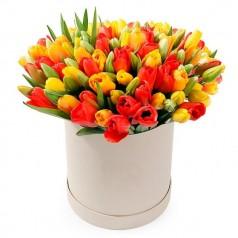 Букет тюльпанов Процветание