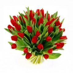 Корона Тюльпаны