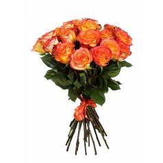 Розы Хай Меджик