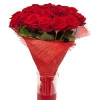 Розы 25  шт