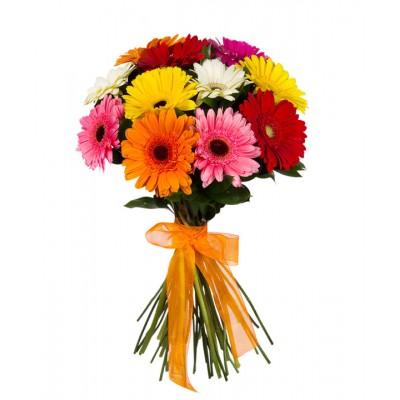 Букет Гербера 11 цветков