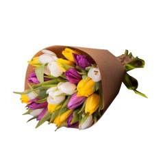 """""""Принцесса Ирен"""" Тюльпаны разноцветные 19 шт"""