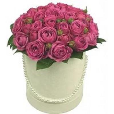Скромная (15 роз)