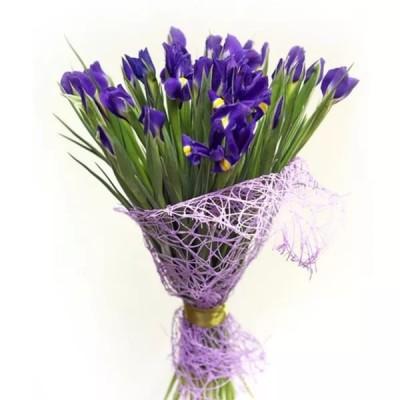 Ирисы 21 цветок