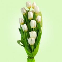 """""""Фиттония"""" букет тюльпаны"""