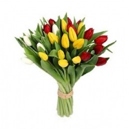 Букет тюльпанов Примависта