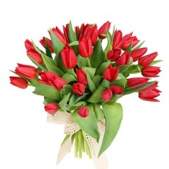 """Букет """"Огненный"""" Тюльпаны красные 21 шт"""