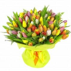 Букет тюльпанов Пышный