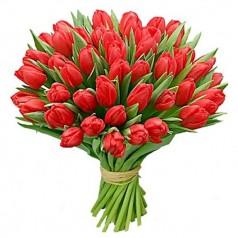 Букет тюльпанов Салют