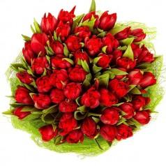 Букет тюльпанов Виват